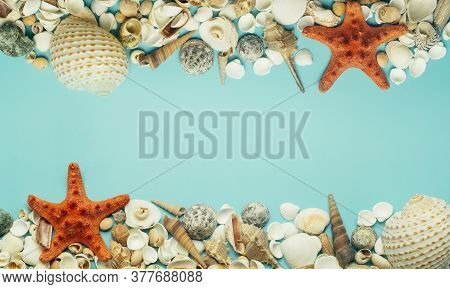 Sea (ocean) Background. Seashells On A Blue Background. Rest, Relaxation, Sea, Ocean, Summer Concept