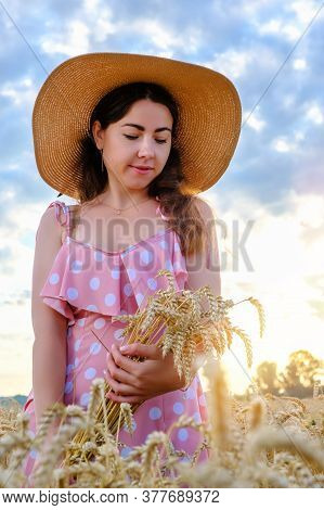 Pretty Young Girl With Long Hair Holds Golden Stalks Of Wheat In Field At Sunrise.