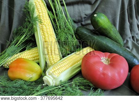 Yellow Corn Red Tomato Green Dill Pepper Zucchini Fresh Organic Natural Traditional Season Product L
