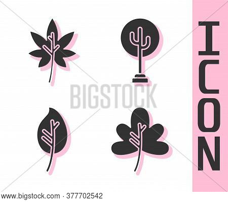 Set Leaf Or Leaves, Leaf Or Leaves, Leaf Or Leaves And Tree Icon. Vector