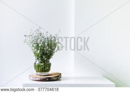 Bouquet Of The Beautiful Spring Blue And White Forget-me-not Flowers On Light Background. Myosotis P