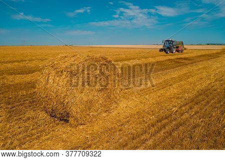 Harvester Machine To Harvest Wheat Field Working. Combine Harvester Agriculture Machine Harvesting G