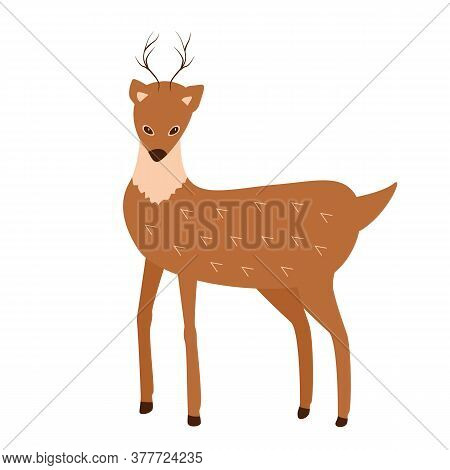 Brown Deer. Vector Illustration Of A Cartoon Funny Deer On A White Background.