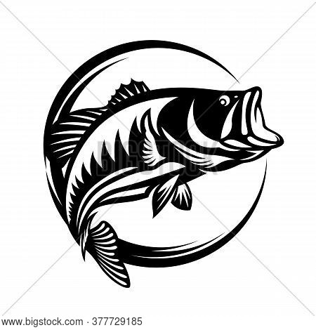 Fishing Logo , The Barramundi Fish Jump Vector Art Design