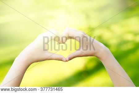Child Hands Heart-shaped. Blurred Background Outdoors. Handmade Heart With Female Hands