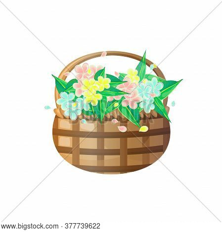 Basket With Frangipani Flowers Of Different Colors. Vector Illustration.