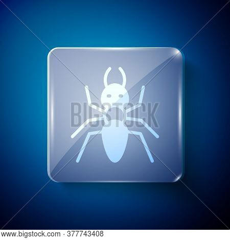 White Ant Icon Isolated On Blue Background. Square Glass Panels. Vector