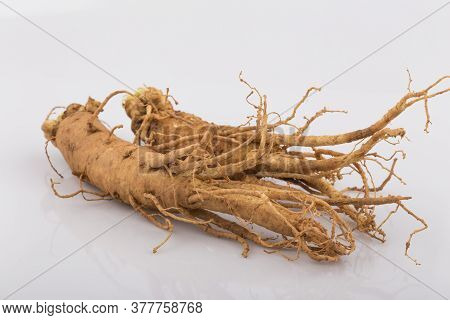 Fresh Ginseng Roots Isolated On White Background.