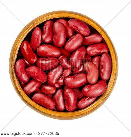 Canned Red Kidney Beans In Wooden Bowl, Also Known As Common Kidney Bean, Rajma Or Surkh. A Variety