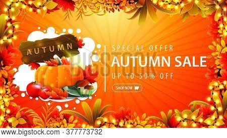 Special Offer, Autumn Sale, Up To 50% Off, Orange Discount Banner With Frame Of Autumn Leaves Decora