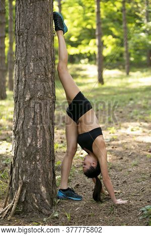 Fit Girl Doing Strength Exercises Near Tree. Athletic Girl On Green Forest. Young Sportswoman Doing