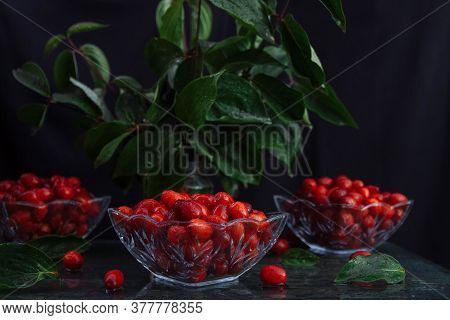 Ripe Dogwood Berries In Glass Salad Bowls With Drops Of Water And Sprigs Of Green Leaves On A Black