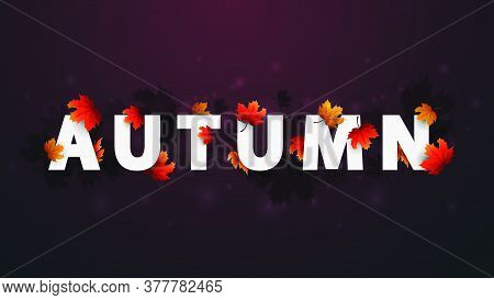 Autumn 3d Title Concept. Banner With White Great Headline With Autumn Leafs. Autumn Background In Bl
