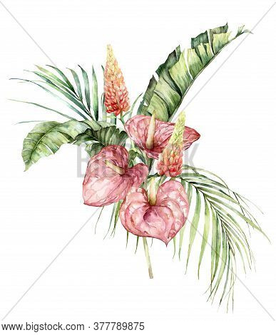 Watercolor Tropical Bouquet With Anthurium, Lupine And Palm Leaves. Hand Painted Tropical Flowers Is