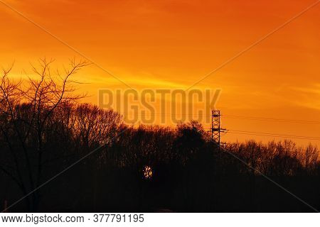 Sunset Sky. Late Orange Sun With Trees Silhouettes Scenery. Photography Of Tranquil Skyline With Woo