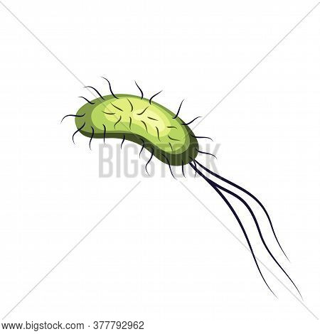 Flat Green Bacterium With Antennae And Tail Isolated On White. Cartoon Parasitic Microorganism. Cont