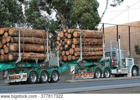 Geelong, Australia - April 7, 2007: Articulated Semi Truck Transport A Cargo Of Just Cut Logs