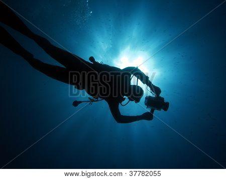 Cameraman diver