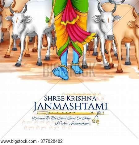 Illustration Of Feet Of Lord Krishna In Happy Janmashtami Festival Background Of India