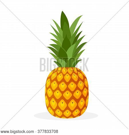 Pineapple Tropical Sweet Summer Fruit Icon Isolated On White Background. Yellow Pineapple With Green