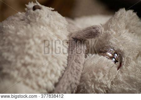 Wedding Rings On A Fluffy Grey Teddy Bear. High Quality Photo