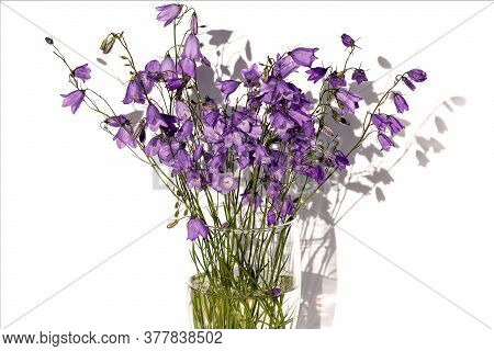 In A Glass Vase With Water, A Bouquet Of Blue Field Cornflowers On An Isolated White Background. L