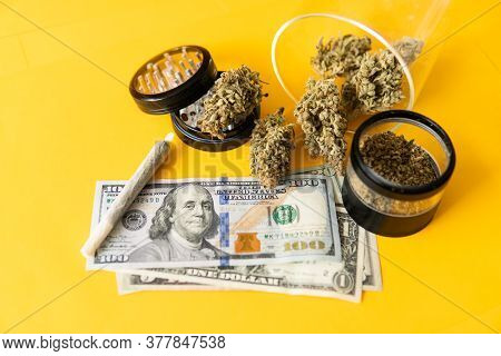 Cannabis In Economics. Sativa Thc Cbd. Joint Weed. Marijuana Weed Bud And Grinder. Indica Medical He