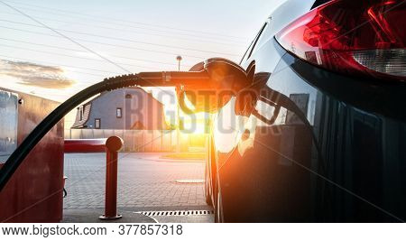 Fuel Car. Pump Petrol From Nozzle In Vehicle Tank. Gasoline, Oil Gas Station. Economy Business With