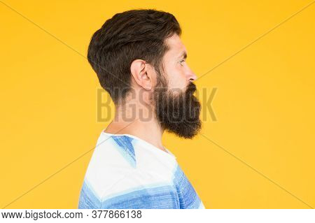Beard Fashion And Barber Concept. Man Bearded Hipster Stylish Beard And Mustache Yellow Background.