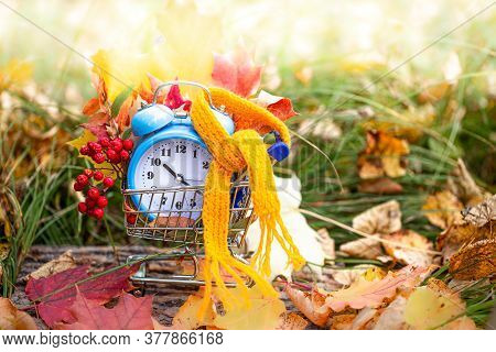 Vintage Alarm Clock And Maple Tree Leaves In Autumn Forest. Autumn Season Image Style. Fall Back Day