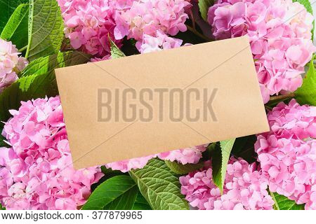 Blank Envelope And Pink Hydrangea Flowers. Copy Space. Greeting Card, Correspondence And Newsletter
