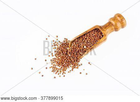 Red Seeds Of Organic Quinoa - Chenopodium Quinoa. White Background