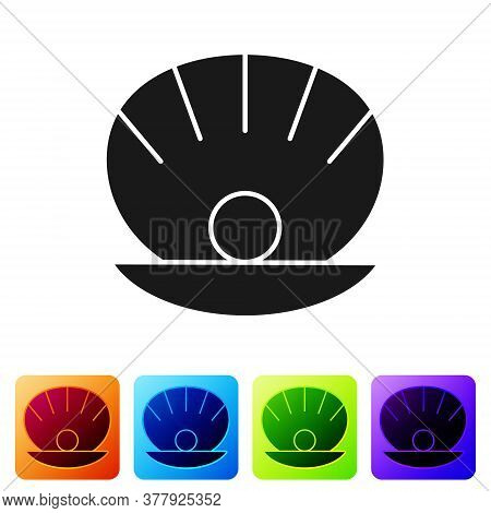 Black Natural Open Shell With Pearl Icon Isolated On White Background. Scallop Sea Shell. Seashell S
