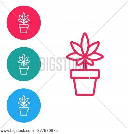 Red Line Medical Marijuana Or Cannabis Plant In Pot Icon Isolated On White Background. Marijuana Gro