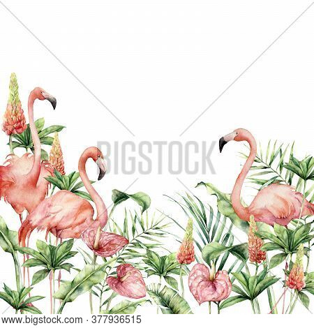 Watercolor Tropical Border With Pink Flamingos, Anthurium And Lupine. Hand Painted Birds, Flowers An