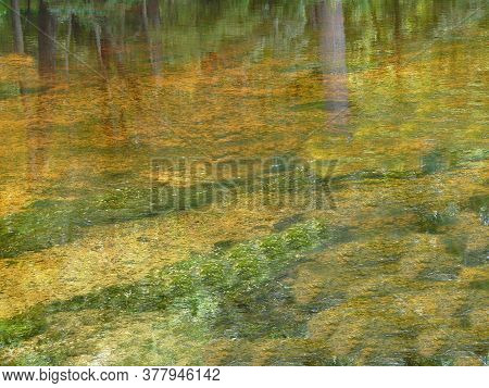 Beautiful Reflections Of Trees In The Clear, Colorful Water Of A Natural Spring At Rum Island Spring