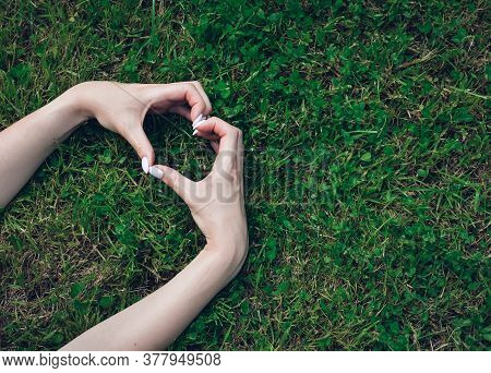 Female Hands Making A Heart Sign With Fingers, On Grass Background. Love Concept For Valentines Day.