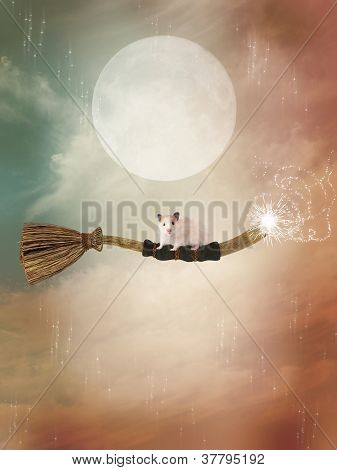 broom flying in the sky with mouse poster