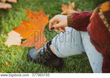 Seasonal Concept. Yellow Fallen Maple Leaf Holds A Female Hand In The Park. Close-up Top View. Seaso