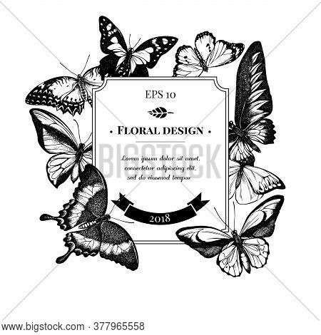 Badge Design With Black And White Red Lacewing, Wallaces Golden Birdwing, Purple Spotted Swallowtail