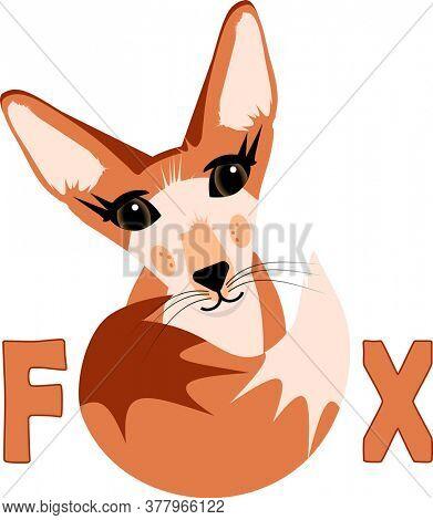 Cute Desert Fox Character Illustration