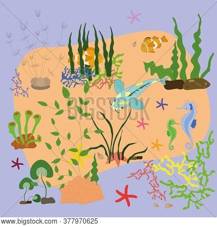 Algae, Corals, And Rocks. Underwater Natural Plants Are Isolated. Underwater World, Cartoon Illustra