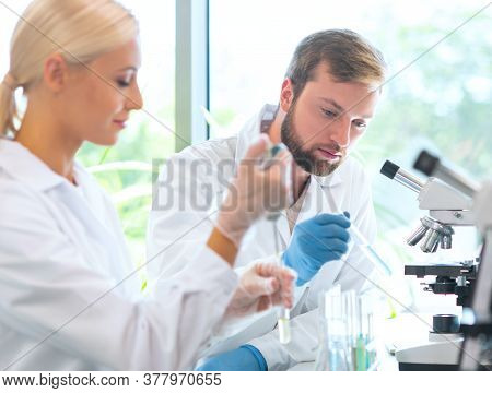 Scientist Working In Lab. Doctors Making Medical Research. Biotechnology, Chemistry, Science, Experi