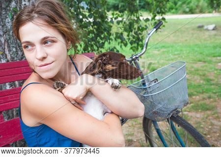 A Girl In A Blue Sundress Sits On A Bench By A Birches And Holds A Beautiful Little Brown And White