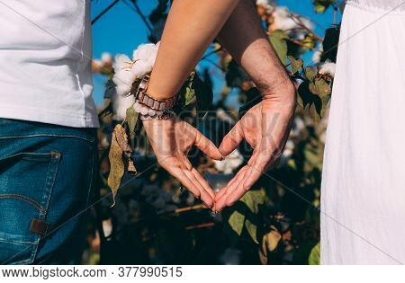 A Couple Show Heart With Hands In Cotton Field. Woman In White Dress And Man In Blue Jeans And White