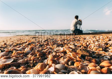 Seashells On Mediterranean Sea On Sand And Blurred Young Photographer From Back With Tripod And Came