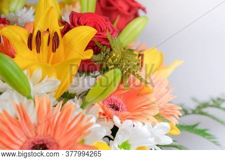 Close Up Of Beautiful Bouquet Of Mixed Flowers With Copy Space. Bright Colorful Mix Of Lilies, Roses