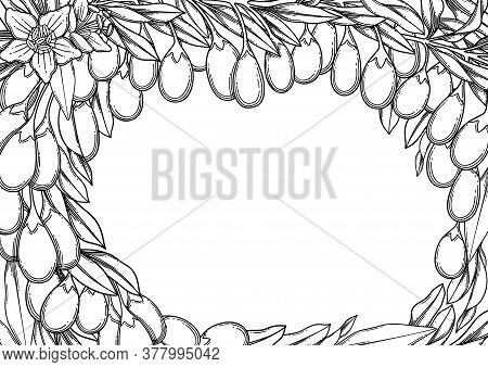 Graphic Goji Berries, Flowers And Leaves. Vector Floral Design