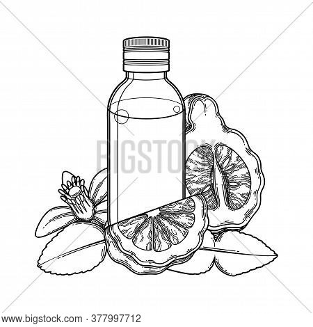Graphic Oil Bottle Surrounded By Bergamot Fruits, Leaves And Flower