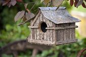 Small wooden bird house with iron roof hanging in cherry tree poster